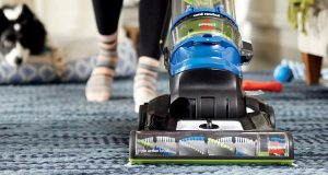 Best Upright Vacuum Cleaner for Pet Hair reviews