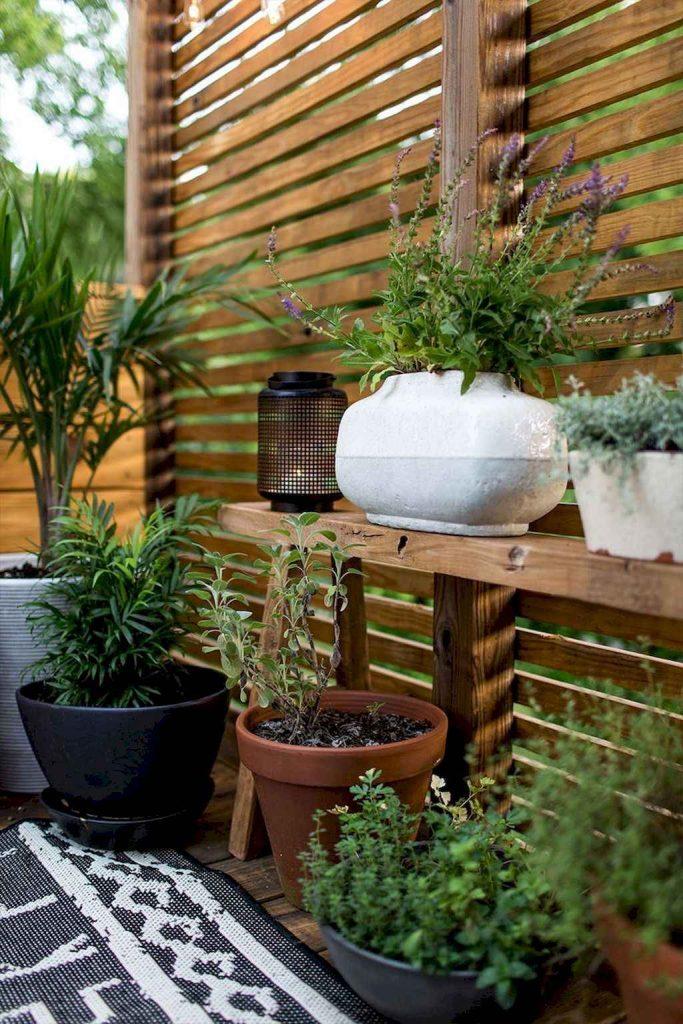 DIY Backyard Privacy Fence Design Ideas