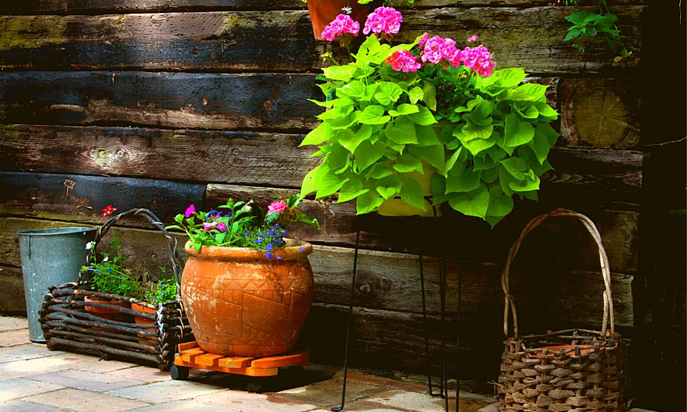 DIY Patio Garden Ideas