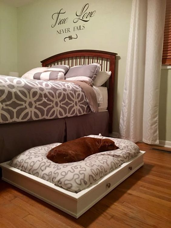 Dog Trundle Beds