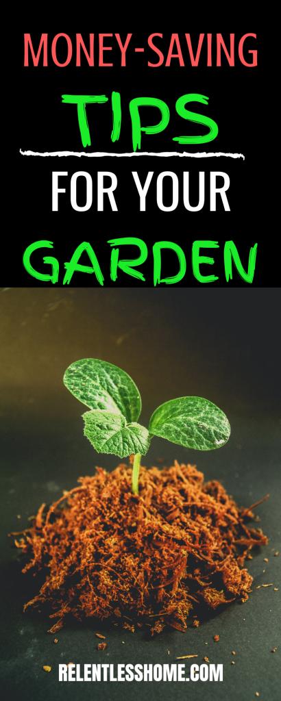 Money-Saving Tips For Your Garden