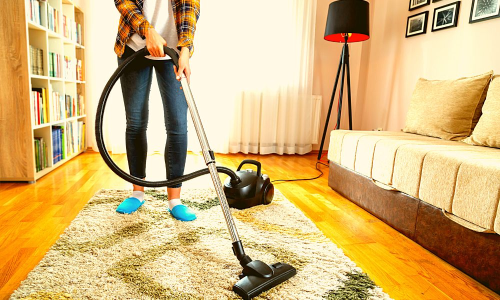 Best Bagged Vacuums